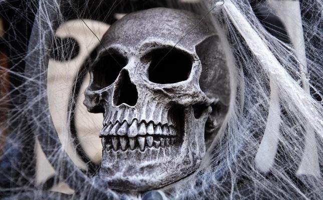 Man who dumped human head in recycling bin as Halloween prank arrested